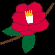 flower_tsubaki.png